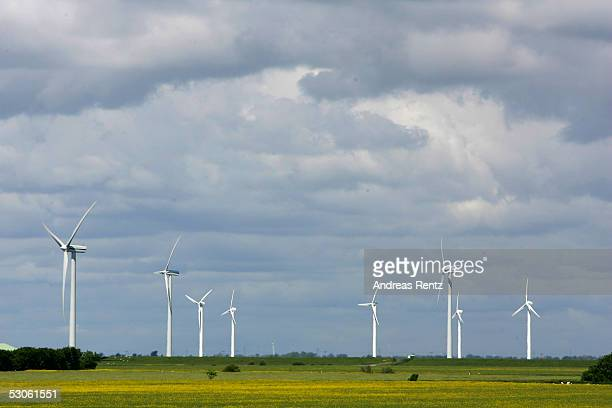 Wind turbines generate electricity on June 12 2005 in Reussenkoege near Husum in northern Germany Germany accounts for nearly half of worldwide...
