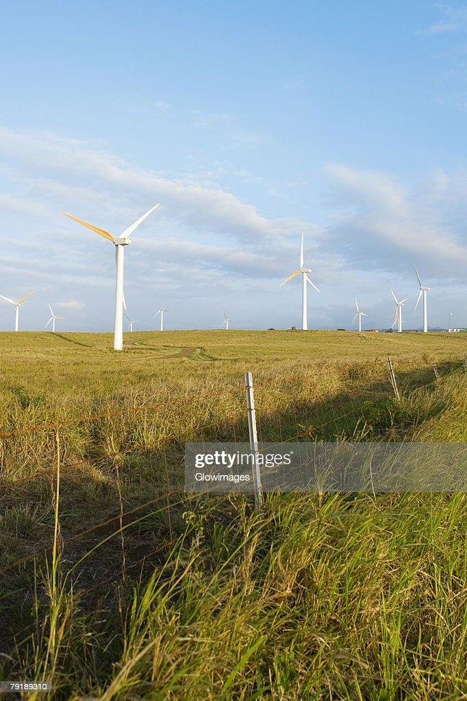 Wind turbines in a field, Pakini Nui Wind Project, South Point, Big Island, Hawaii Islands, USA : Foto de stock