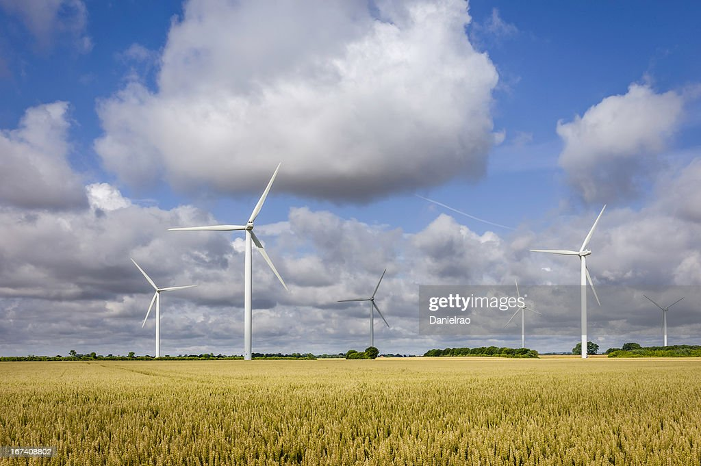 Wind turbines in a wheat field, Yorkshire, UK. : Stock Photo