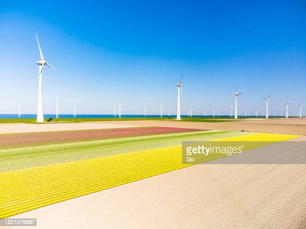 """wind turbines in agricutlural fields  during springtime seen from above - """"sjoerd van der wal"""" or """"sjo"""" stock pictures, royalty-free photos & images"""