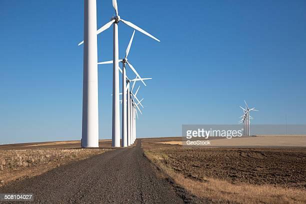 Wind turbines in farmland