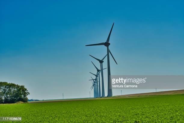 wind turbines in flevoland, netherlands - 干拓地 ストックフォトと画像