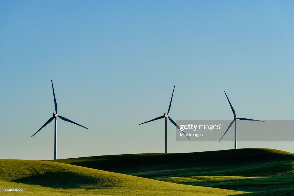 Wind turbines in green rolling landscape : ストックフォト