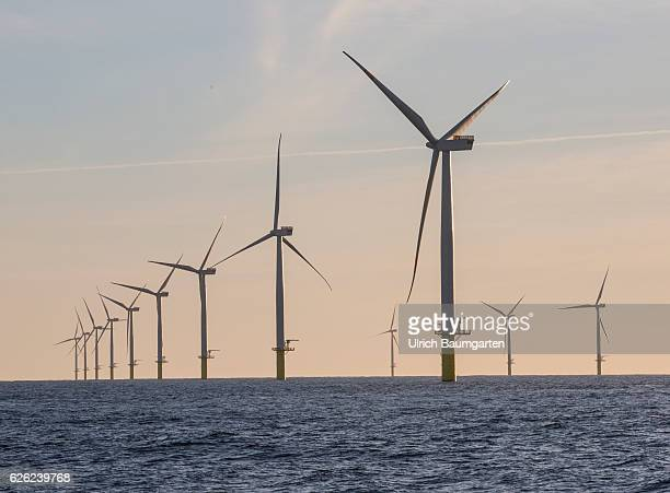 Wind turbines in the offshore wind farm Amrumbank West of the EON SE