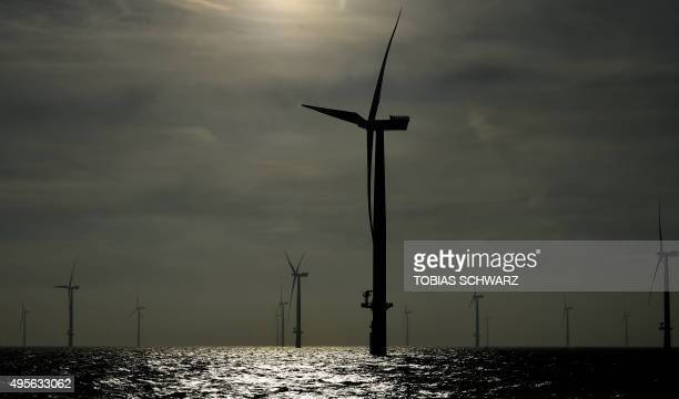 Wind turbines of the German offshore wind farm 'Amrum Bank West' owned by German energy company EON are seen near the Heligoland archipelago on the...