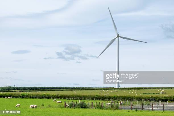 wind turbines on a farm against a blue cloudy sky. - sustainable development goals stock pictures, royalty-free photos & images