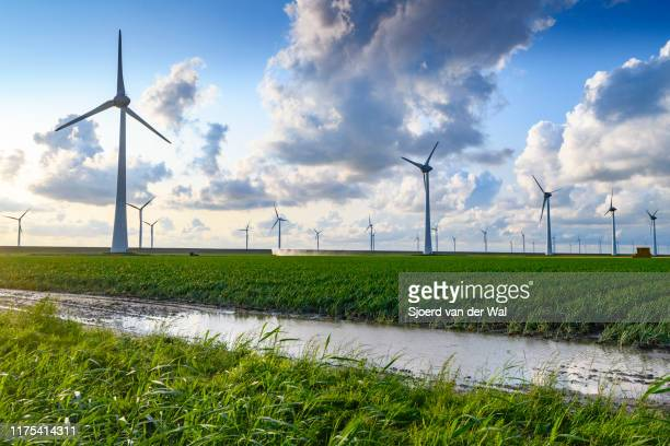 wind turbines on a levee in a windpark during a summer sunset - turbin bildbanksfoton och bilder