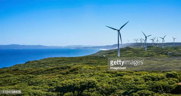 wind turbines on a wind farm, albany, western australia, australia - sustainable resources stock pictures, royalty-free photos & images