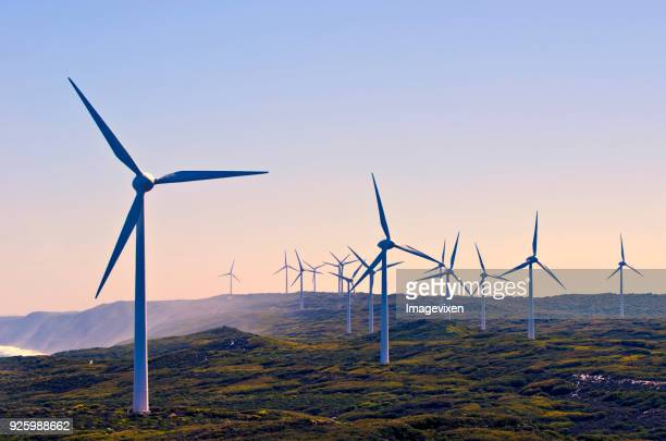 wind turbines on a wind farm, albany, western australia, australia - windenergie stockfoto's en -beelden