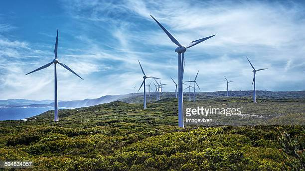 wind turbines  on a wind farm, australia - windmills stock photos and pictures