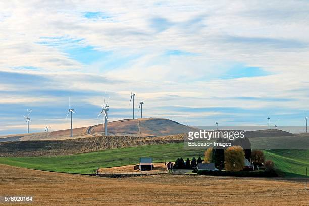 Wind turbines on a windy hill above a farm home in southeastern Washington state in November