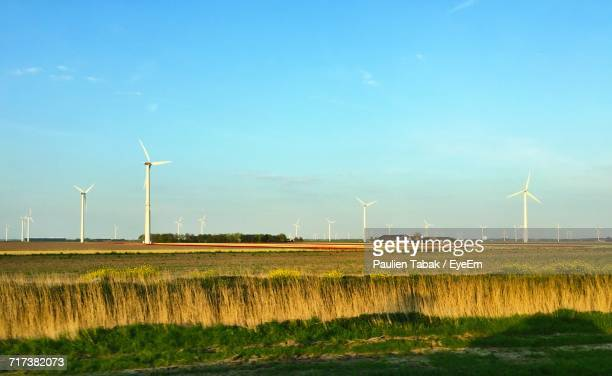 wind turbines on field - paulien tabak stock pictures, royalty-free photos & images