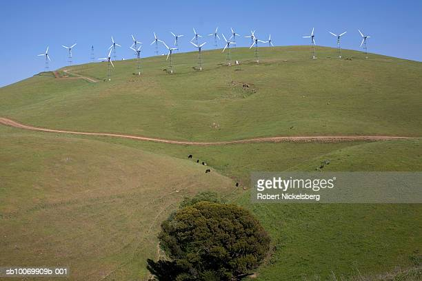 wind turbines on hill - robert nickelsberg stock photos and pictures