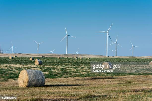 Wind turbines on private working ranch land on July 31 2017 near Kevin Montana The Rim Rock Wind Farm is operated by NaturEner USA with 126 wind...