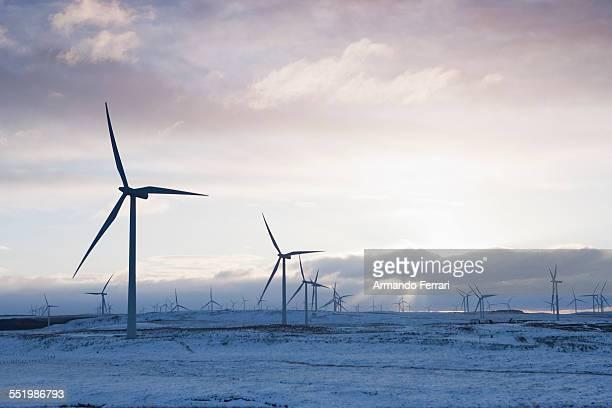 Wind turbines on sandy landscape, Ayrshire, Scotland
