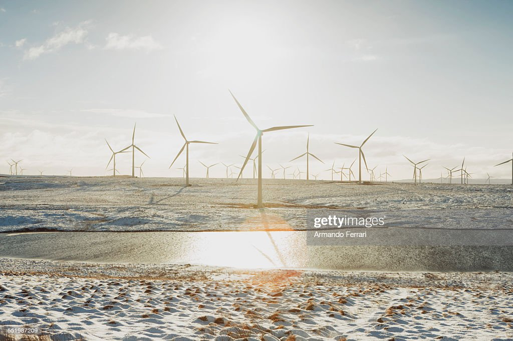 Wind turbines on sandy landscape, Ayrshire, Scotland : Stock Photo