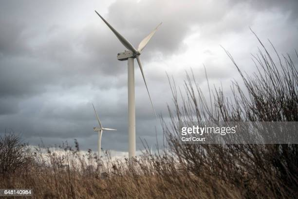 Wind turbines operate on February 23 2017 in Eemshaven Netherlands The Dutch will vote in parliamentary elections on March 15 in a contest that...