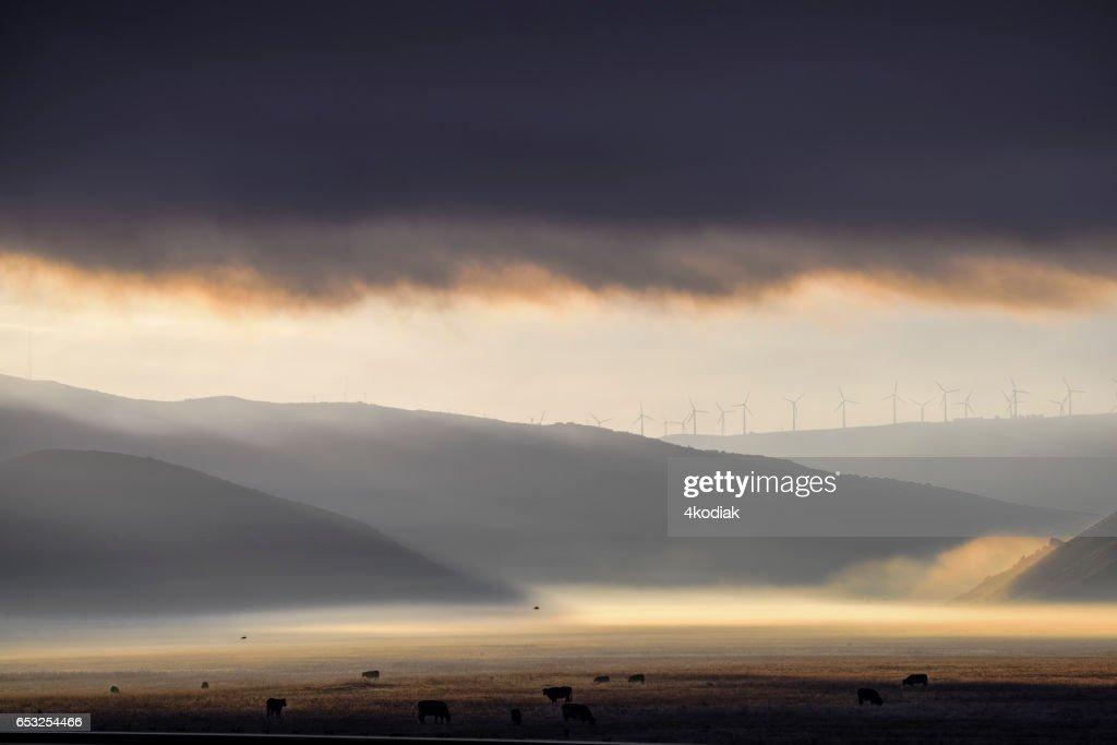 Wind Turbines : Foto stock
