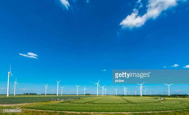 wind turbines, renewable energy on a green field, spring day. wind farm - alternative lifestyle stock pictures, royalty-free photos & images