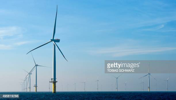 Wind turbines run by Germany's biggest power supplier Eon are pictured at the offshore wind farm Amrumbank West near the North Sea Island of...
