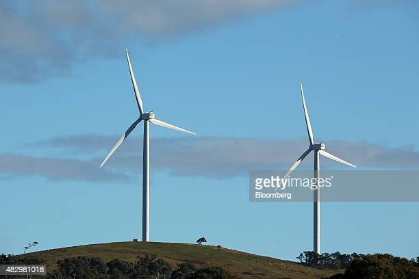 Wind turbines stand at the Woodlawn Wind Farm operated by Infigen Energy in Bungendore New South Wales Australia on Friday July 31 2015 Wind supplied...