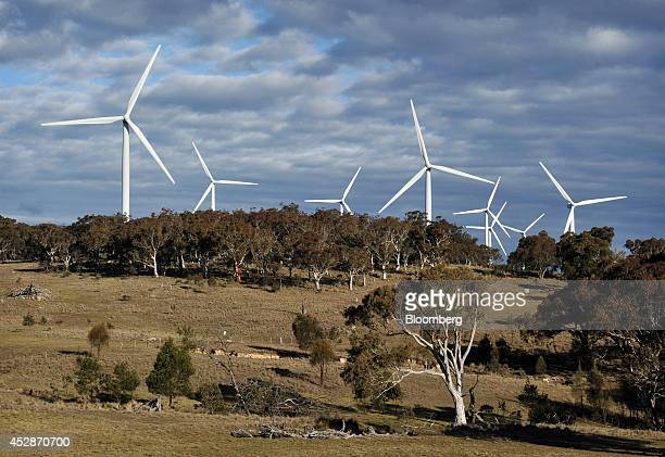 Wind turbines stand behind trees at the Capital Wind Farm operated by Infigen Energy in Bungendore New South Wales Australia on Thursday July 24 2014...