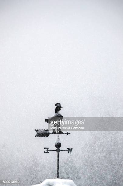 wind vane - east stock pictures, royalty-free photos & images