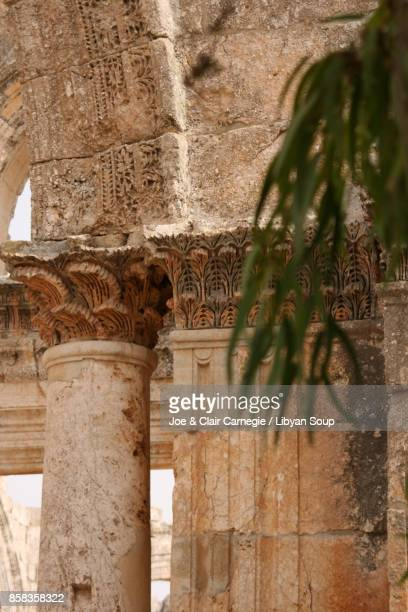 Windblown Acanthus leaf carvings, St. Simeons, Syria.