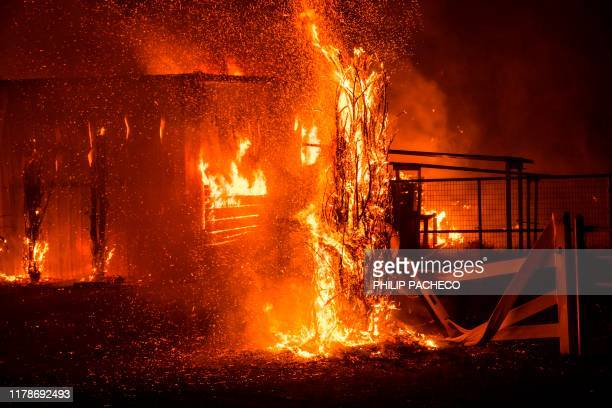 TOPSHOT A winddriven fire burns a structure on a farm during the Kincade fire in Windsor California on October 27 2019 California's governor declared...