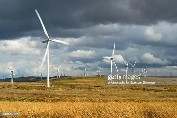 Windfarm array in field