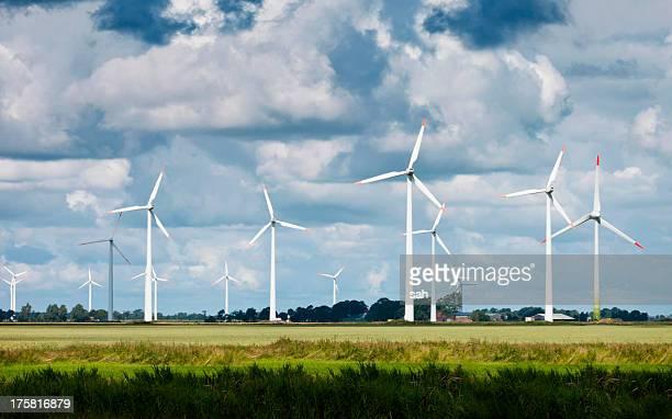 Windfarm in field