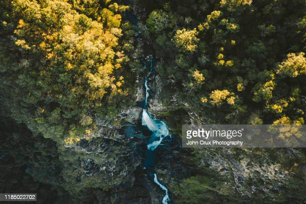 windin drone shot - atherton tableland stock pictures, royalty-free photos & images