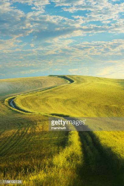 winding country road in tuscany - s shape stock pictures, royalty-free photos & images