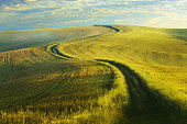 Winding country road in Tuscany