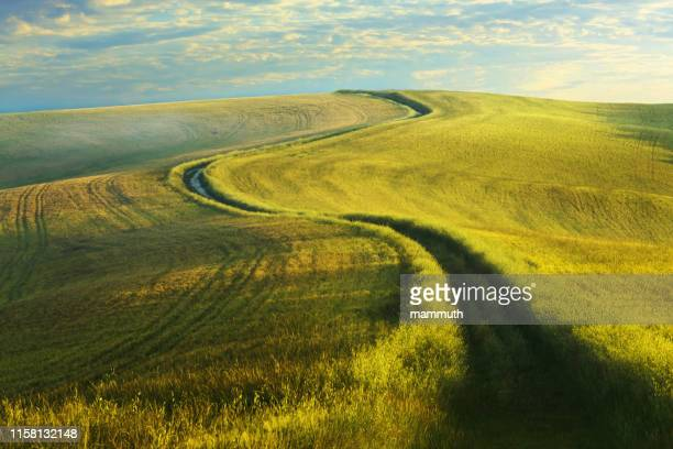 winding country road in tuscany - curve stock pictures, royalty-free photos & images
