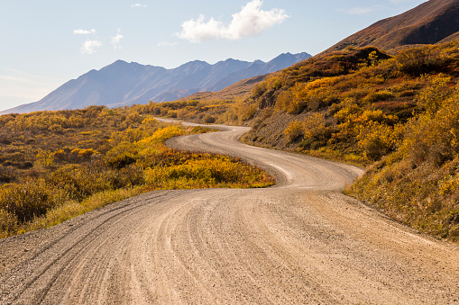 Winding dirt road, Denali National Park, Alaska, USA - gettyimageskorea