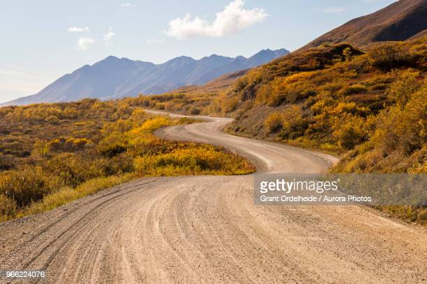 Winding dirt road, Denali National Park, Alaska, USA