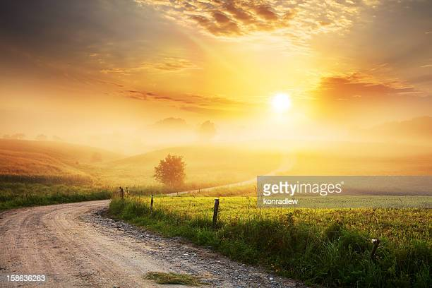 winding farm road through foggy landscape - zon stockfoto's en -beelden