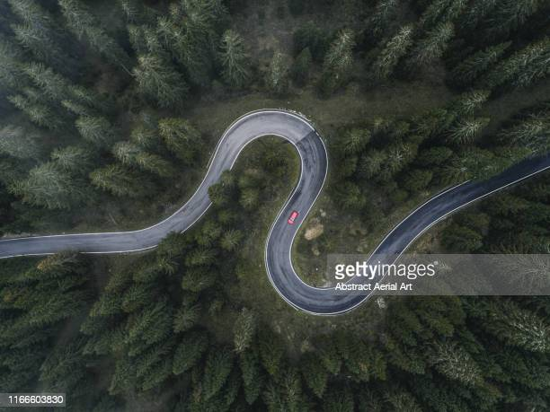winding forest road seen and a car shot by drone, dolomites, italy - strada foto e immagini stock