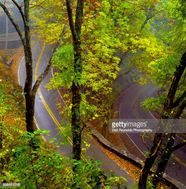 Winding mountain road during Autumn rain