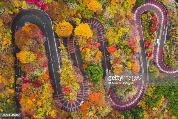 winding mountain road in autumn, japan - paisajes de japon fotografías e imágenes de stock