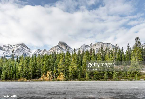 winding mountain road in banff national park - extreme terrain stock pictures, royalty-free photos & images