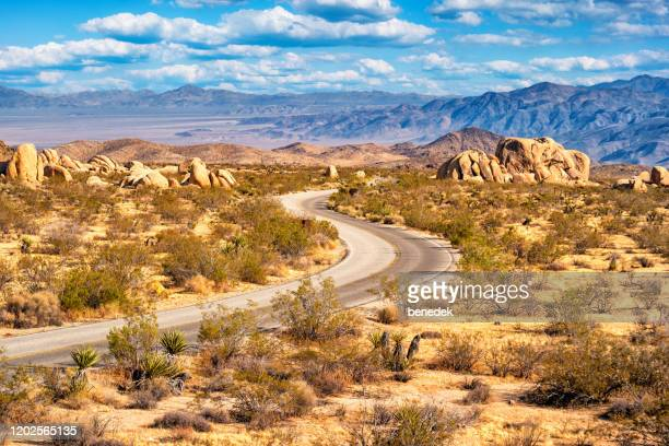 winding pinto basin road joshua tree national park california usa - joshua tree national park stock pictures, royalty-free photos & images