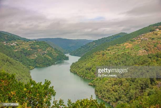 winding river miño - environmental issues imagens e fotografias de stock