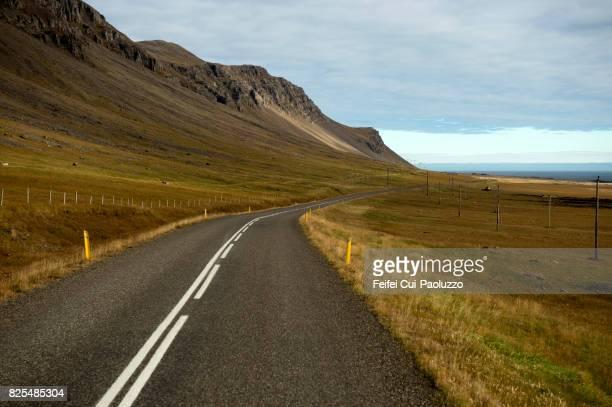Winding road at Berufjörður, in Eastern Iceland