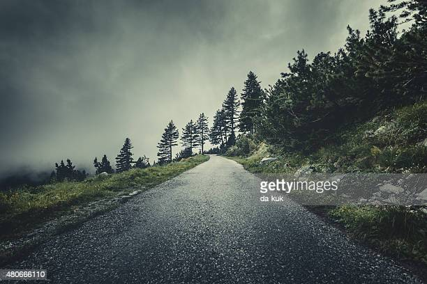 Winding road in a misty forest
