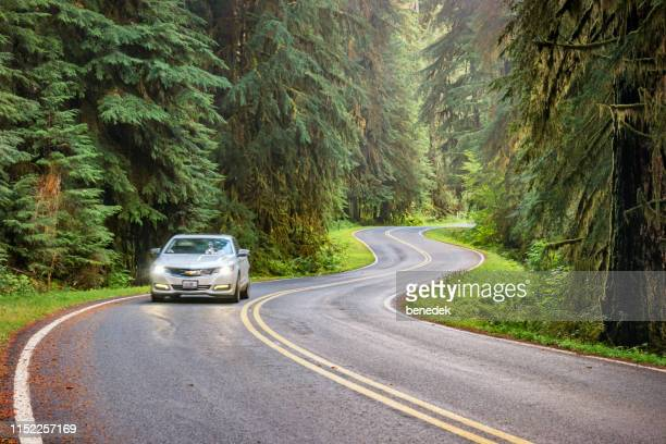 winding road in olympic national park washington usa - chevrolet stock pictures, royalty-free photos & images