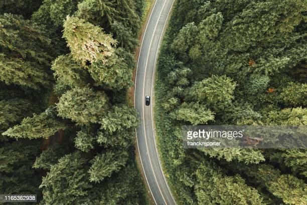 winding road in the forest on north america - drone stock pictures, royalty-free photos & images