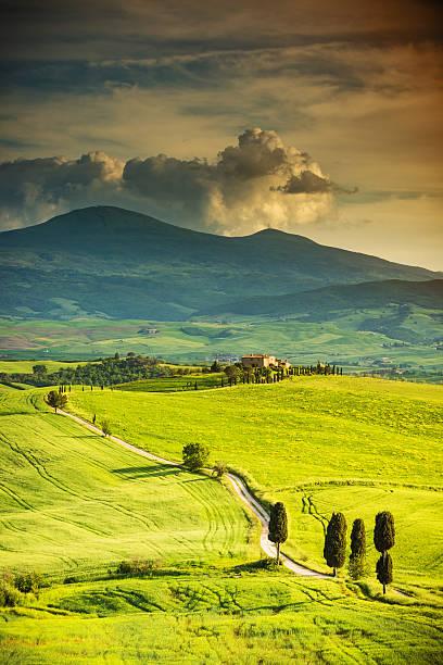 Winding Road In Tuscany Wall Art