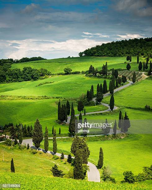 winding road in tuscany - chianti region stock photos and pictures